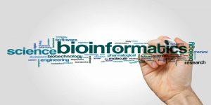 bioinformatic